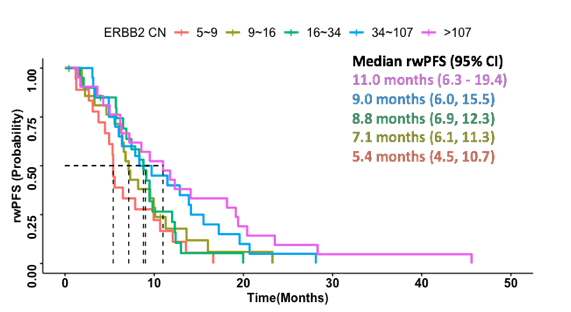 Higher ERBB2 CN is associated with longer real-world progression free survival (rwPFS) in advanced GEAtreated with ant-HER2 therapy in the first line setting.