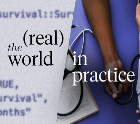 the real world in practice